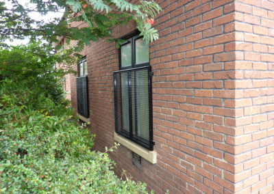 Mesh Window Grilles In LS6
