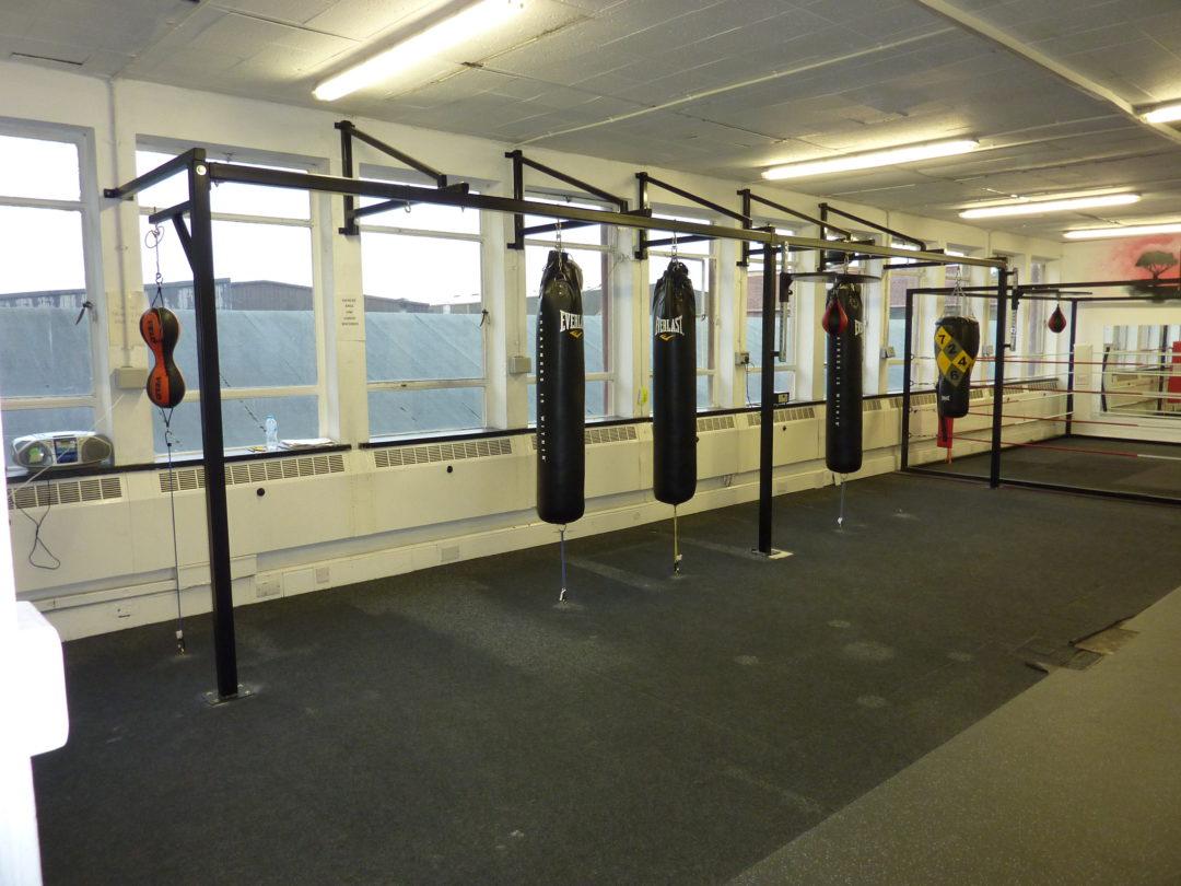 The Lion Gym